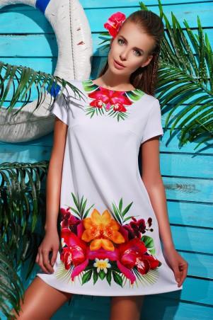 Glem: Платье Орхидея  Тая-2Б к/р - главное фото